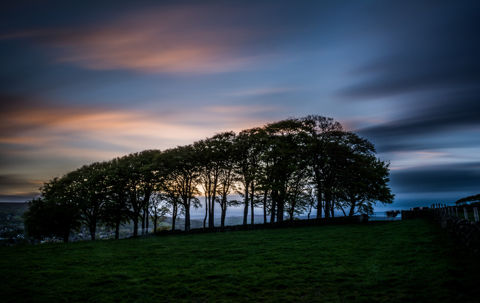 tree line at dusk (ref av 16) 